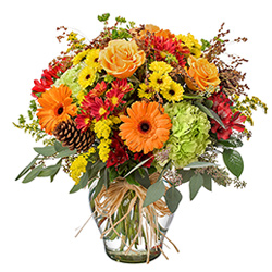 Viviano Flower Shop Best Detroit Florist Roses Fresh