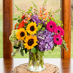 Viviano flower shop best detroit florist roses fresh flowers harvest beauty 6995 14995 available nationwide mightylinksfo