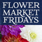 Flower Market Friday: Michigan Mix w/Dahlias $14.95