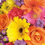 Bouquet to Vase Arrangement Workshop *CANCELED*