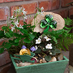 Shamrock Planter Workshop