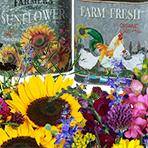 Michigan 2pm Flower Arrangement Workshop