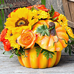 Ceramic Pumpkin Arrangement Workshop with fresh flowers *CANCELED*