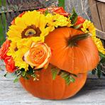 Fresh Pumpkin Arrangement Workshop with fresh flowers