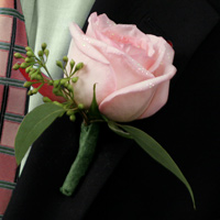 Sparkle Boutonniere #12BOUT426 Viviano Flower Shop men's special event floral design with pink rose, protea, glitter