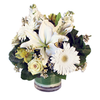 Emerald #135115 Viviano floral arrangement in green & white