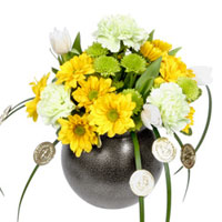 Pot O Gold #149411 Viviano Flower Shop floral arrangement for St. Patrick's Day w/ carnations,  daisy mums, button mums, coins