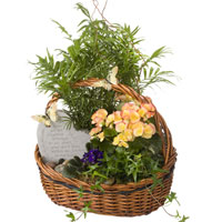 GH Forever In My Heart #152809W Viviano Flower Shop greenhouse sympathy gift, green &  blooming plants w/ garden stone