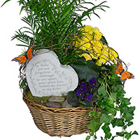 GH Forever In My Heart #152819W Viviano  greenhouse sympathy gift, green &  blooming plants w/ garden stone