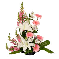 Heart's Comfort #178609  Viviano contemporary sympathy & funeral arrangement in pink & white