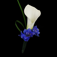 Atlantis Boutonniere #17BOUT418 Viviano prom homecoming and special event design in blue and white