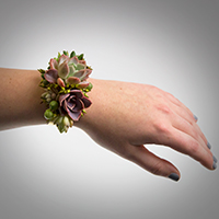 4-Ever Corsage #17COR406 Viviano Flower Shop arrangement to wear with real succulents