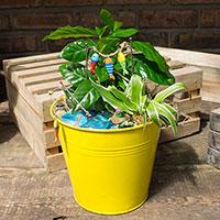 GH Mini Garden Kit #22020 Viviano