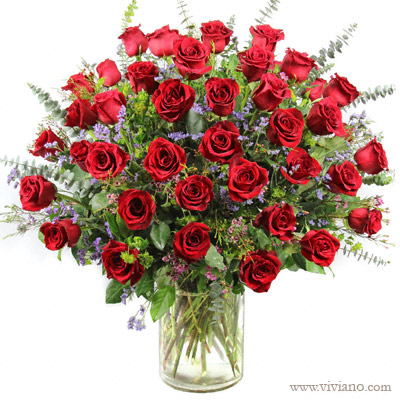 Four Dozen Roses Arranged Choice Of Color From Viviano Flower Shop