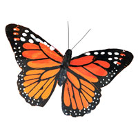 Butterfly Add-on #302BUTTERL Viviano butterfly 3in or larger,  assorted colors