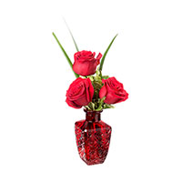Li'l Romance #31317 Viviano  gift of roses in keepsake bud vase