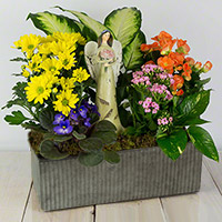 GH Angel Blessings Garden #32221 Viviano