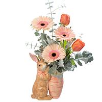 Hoppy Spring #33119 Viviano