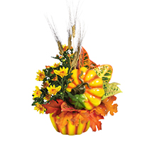 GH Pumpkin Garden #34213G Viviano Flower Shop greenhouse