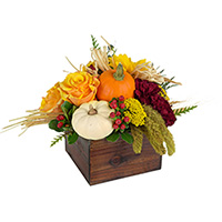 Bountiful #34318 Viviano fall arrangement in wood box with harvest trim