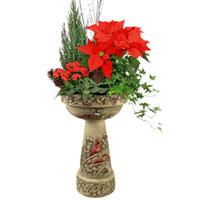 GH Christmas Cardinal Planter #38214 Viviano greenhouse gift with Burley Clay garden keepsakes