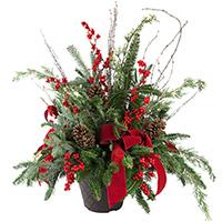 Christmas Porch Pot #400182 Viviano outdoor fresh-cut evergreen arrangement with trim