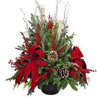Christmas Porch Pot XL #40019 Viviano