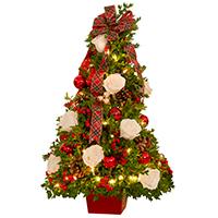 Boxwood Tree #42019 Viviano