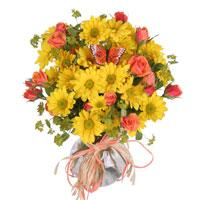 Sunlight #42815BY Viviano yellow daisies arrangement