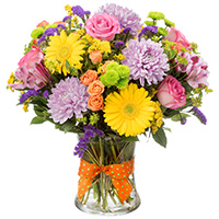 Sundance #43516 Viviano colorful vase arrangement with mums roses gerbs and alstroemeria