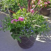 GH Patio Planter #44307 Viviano