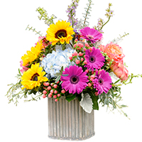 Courtyard #44618 Viviano Flower Shop floral arrangement in bright colors in wooden rectangle container