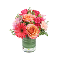 Inspire #45116 Viviano Flower Shop floral arrangement with roses gerbera daisies carnations  and hypericum berries in coral