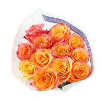Free Spirit Garden Roses #45716B  Viviano bicolor roses