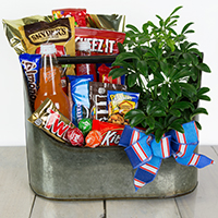 Break Time Snack Basket #49321 Viviano