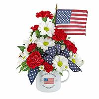 All American #51620 Viviano