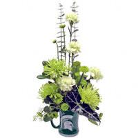 Go Green! - flowers #54311F Viviano