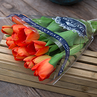 Tulips (loose flowers) #55304 Viviano bouquet of 10 tulip blooms