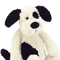 Bashful Puppy #813BAS3BCP Viviano