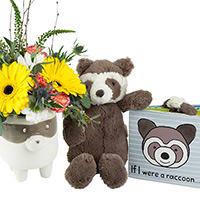 Forest Friend Raccoon #83620R Viviano
