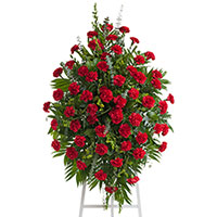 Classic Carnation Spray on Easel #96016 Viviano Flower Shop funeral & memorial service floral arrangement