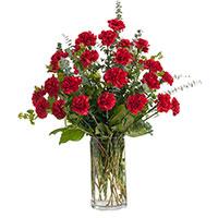 Classic Carnations #96216 Viviano Flower Shop funeral & memorial service floral accent arrangement