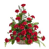 Classic Carnation Traditions #96316 Viviano Flower Shop funeral & memorial service floral accent arrangement