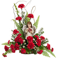 Classic Carnation Devotions #96416W Viviano