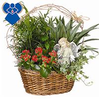 Eden Angel Garden #99306W Viviano