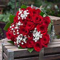 BU 2 Dozen Short-Stemmed Roses Wrapped #DRWR2 Viviano