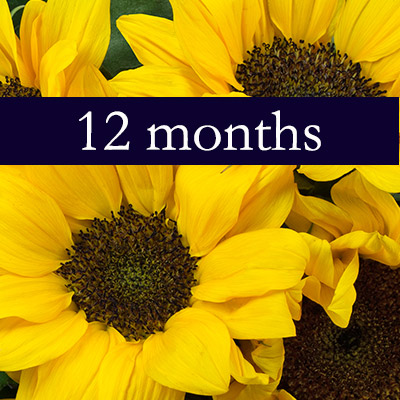 Flower Of The Month Club From Viviano Flower Shop Detroit