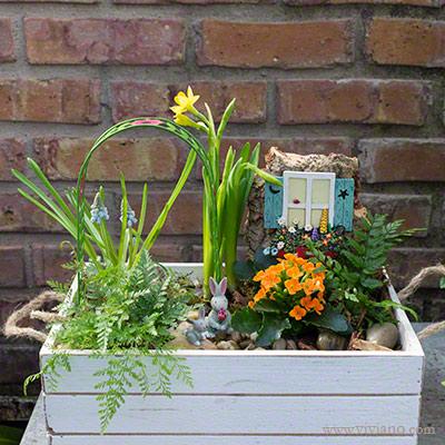 Hoppy trails easter fairy garden flowers plants gift baskets easter fairy garden negle Gallery