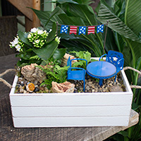 GH Star-Spangled Fairy Garden #W0518 Viviano Flower Shop greenhouse gift  with patriotic theme miniatures